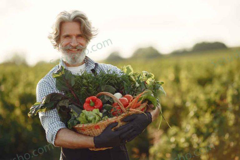 پیر مرد سیبیل دار با تعدادی سبزیجات در دستش